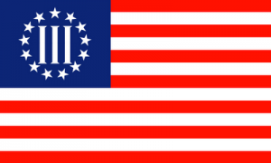 3_Percenters_flag